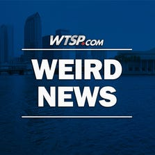In the mood for something bizarre? Check out weird news on wtsp.com.
