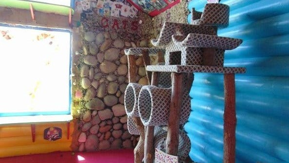 This kitty condo is only a taste of the cat-centric decor festooning a home for sale in Concho, Arizona. Nearly every inchof wall space (and some floors) are covered in cat images and cat-themed memorabilia.