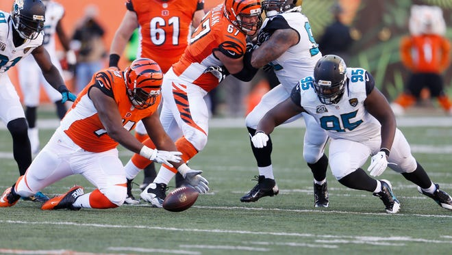 Cincinnati Bengals tackle Marshall Newhouse (74) falls on the football in front of Jacksonville Jaguars defensive end Abry Jones (95) on a deflected pass during the third quarter of their game played at Paul Brown Stadium in Cincinnati, Ohio November  2, 2014. The Enquirer/Gary Landers