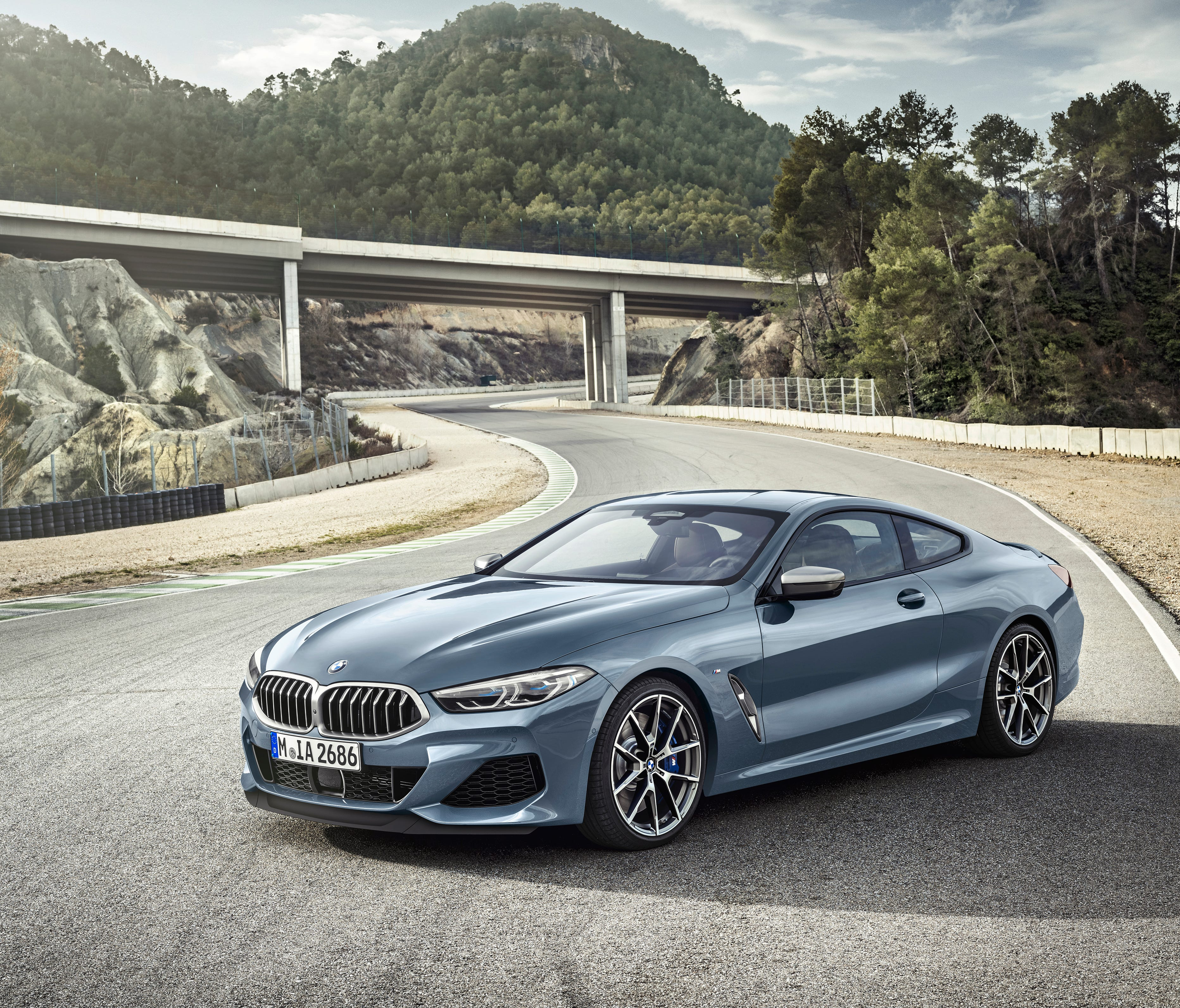 The 2019 BMW 8-series coupe.