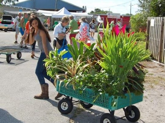 Grab your wagon and head to Big Country Master Gardener Associaton plant sale Saturday.