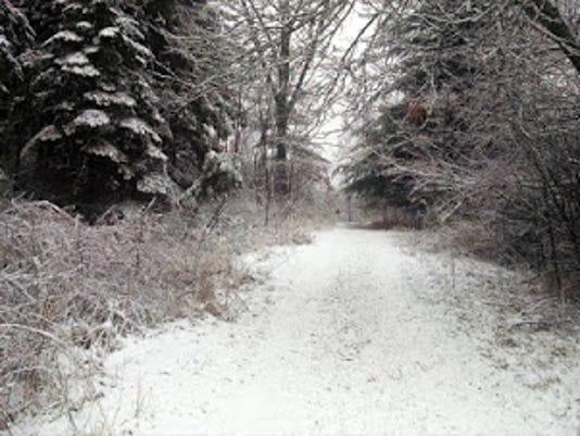 Spring-Snow-IMG-20180331-082624413.jpg