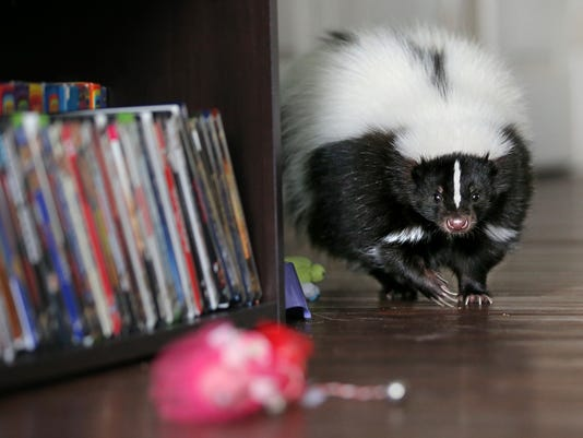 04_073114_ExoticPets.JPG
