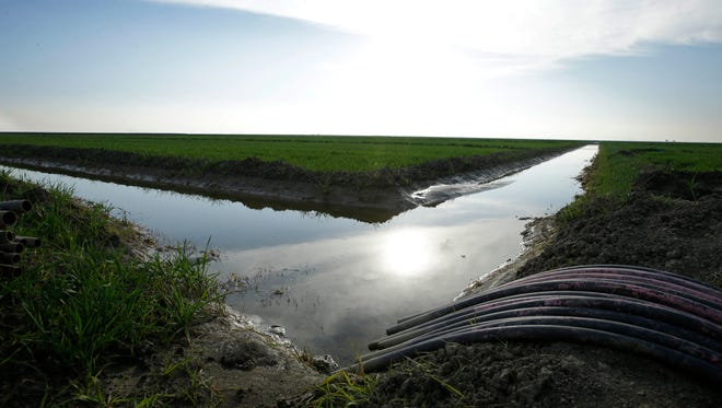 Water flows through an irrigation canal to crops near Lemoore. Environmental and fishing groups have filed challenges Thursday seeking to block Gov. Jerry Brown's ambitious plan to build a pair of massive water tunnels in California.