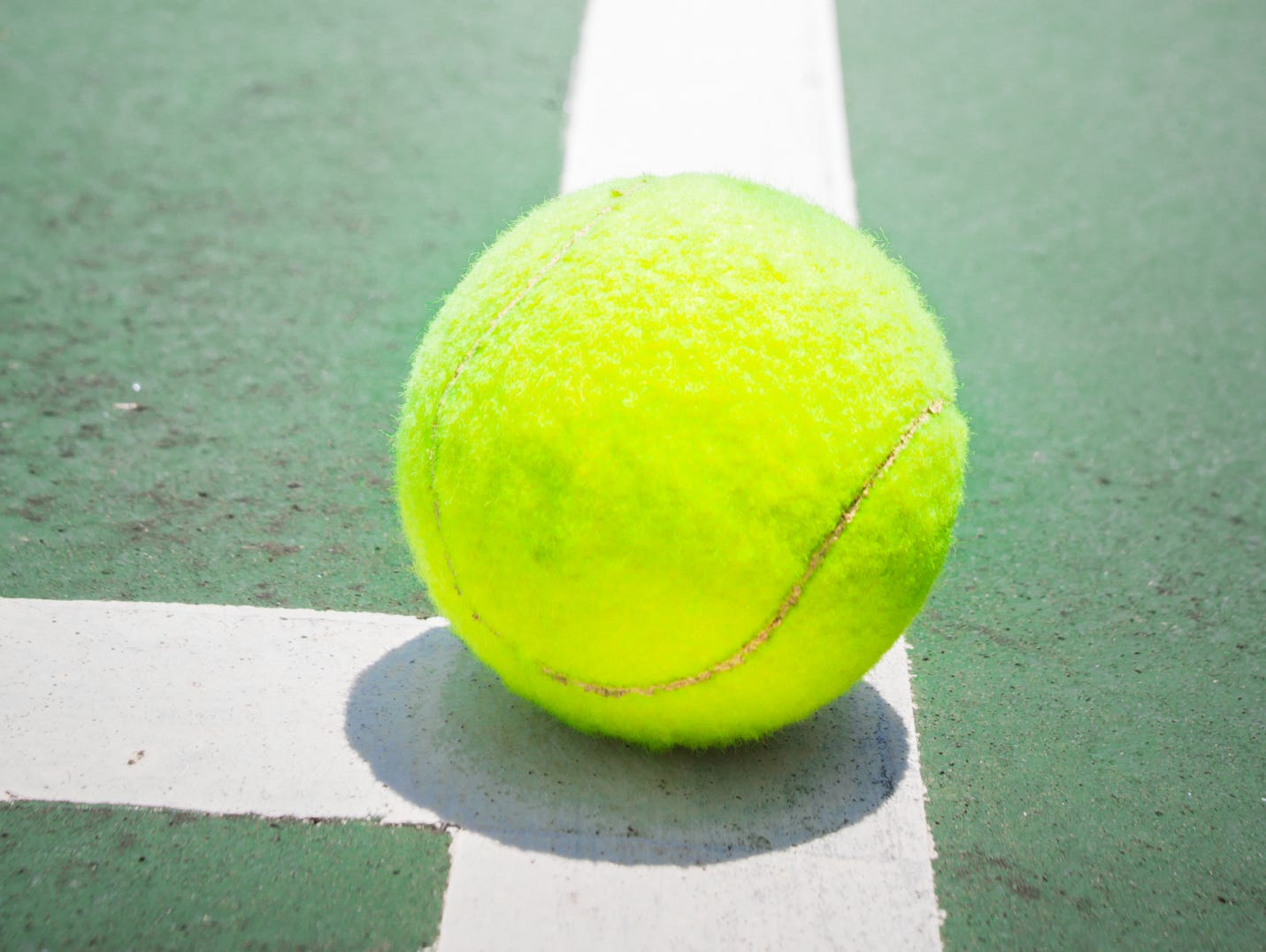 The Green Bay area's top prep boys tennis players for the 2015 season.