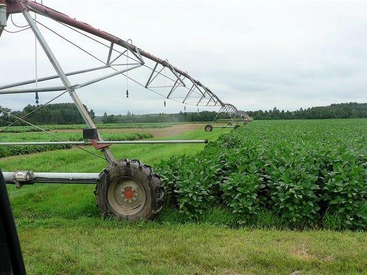 636058234460357887-Farmer-Oncken-photos-1.jpg