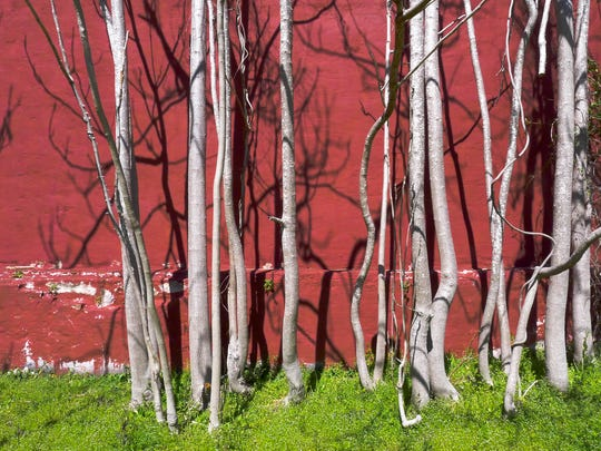 Gretchen Haien's photography is showcased Thursday at Fischer Galleries @119 Event Space.