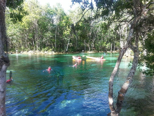 Three Sisters Springs in Crystal River attracts kayakers and snorkelers.