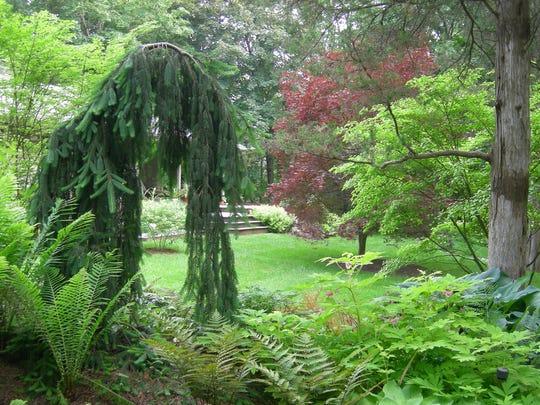 Dappled Berms, the garden of Scott VanderHamm in Poughkeepsie is part of the Open Days program this season.