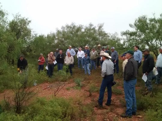 Participants in the recent field day on the Grimes Ranch.