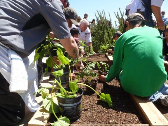 Plants go into the demonstration garden at Kinship Center.
