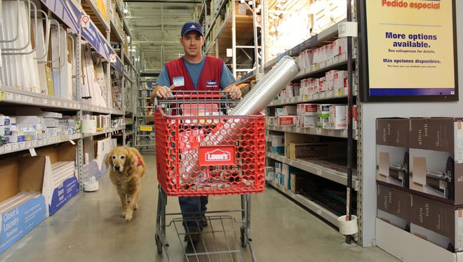 In this Nov. 22 photo, Charlotte follows Clay Luthy as he returns items to shelves at a Lowe's store in Abiline, Texas.  U.S. Air Force veteran Clay Luthy and his service dog golden retriever, Charlotte, both wear red and blue Lowe's vests to work at the home improvement retailer.
