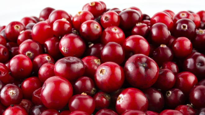 Red ripe cranberries