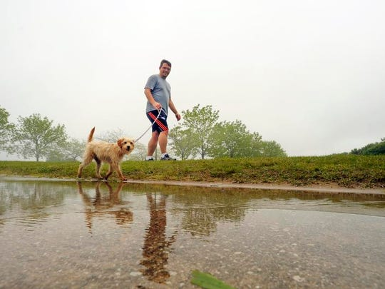Benny Smith avoids a large puddle as he walks his new puppy back from the dog park near the lighthouse.