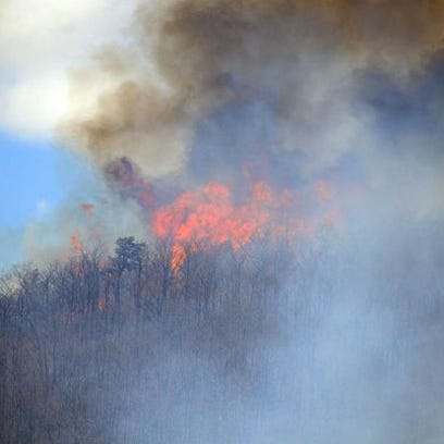 The fire crowned the tops of trees Tuesday afternoon.