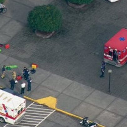 Emergency personnel as seen from a helicopter above