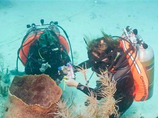 underwater lab 1