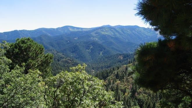 A view of the beautiful Sierra Blanca Mountain and the wilderness surrounding it.