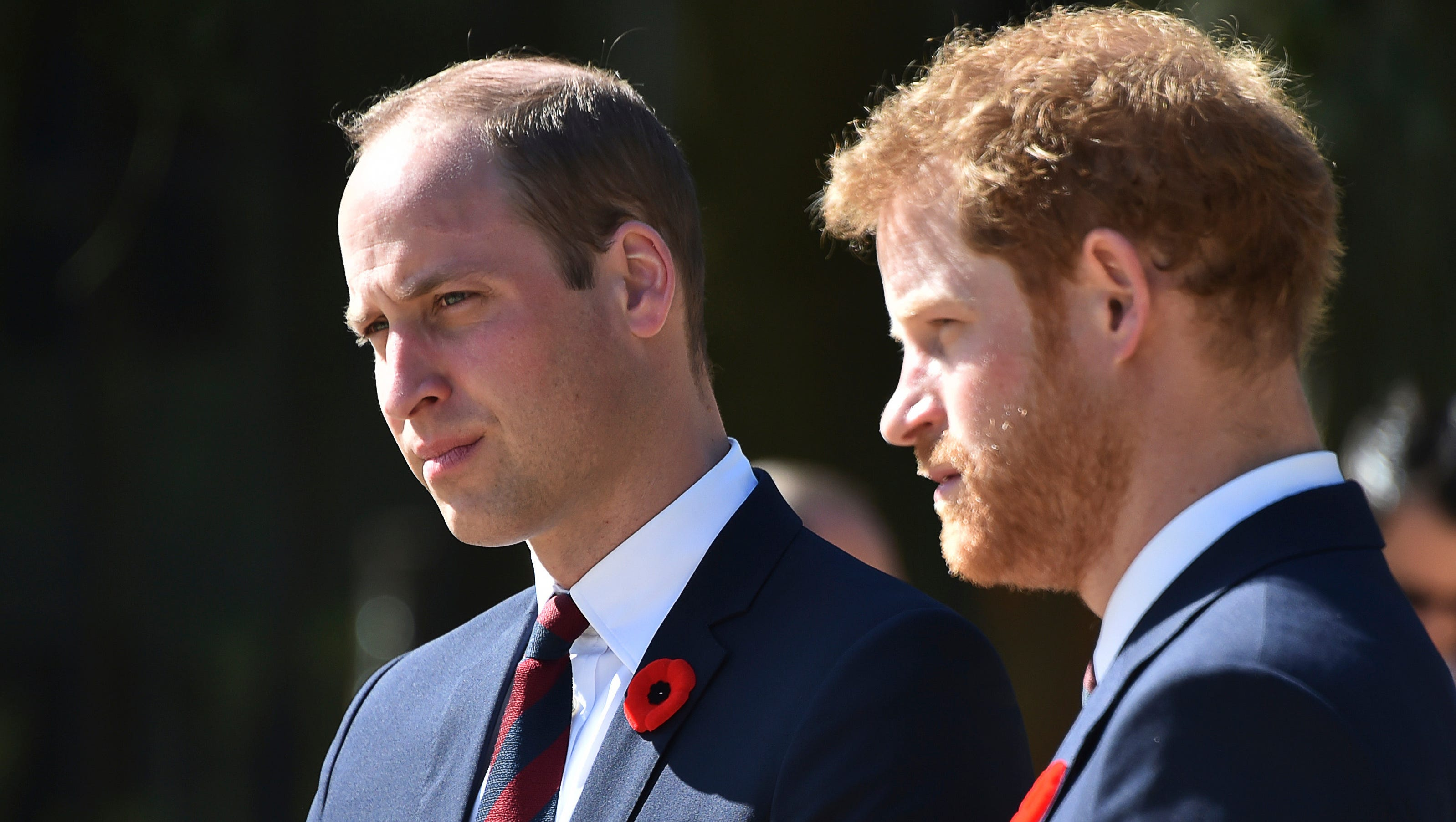 Princes William And Harry Glad They Walked During Diana Funeral
