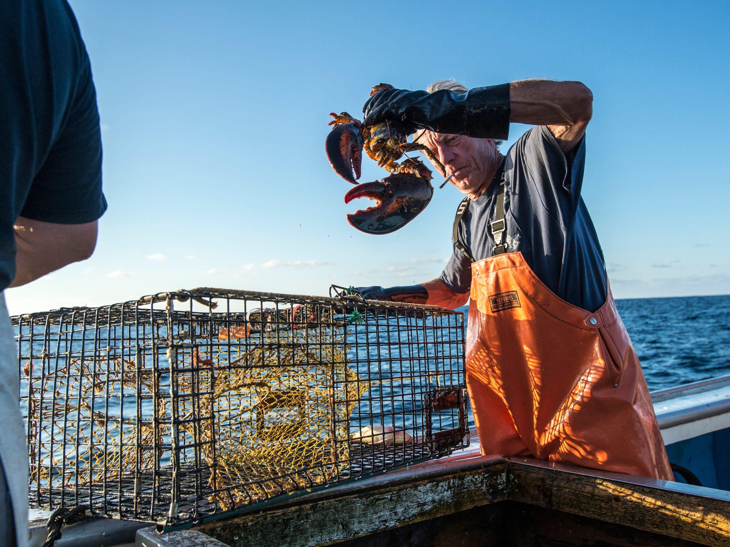 le- Lobstering in Maryland 2838.jpg