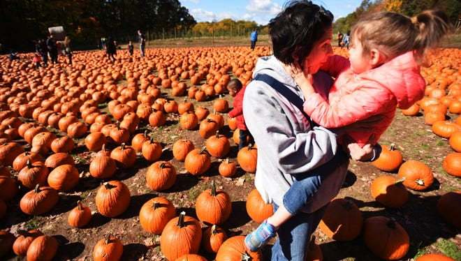 Find the perfect pumpkin this weekend at one of these area farms and events.