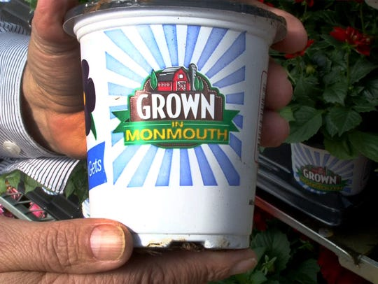 """One of the """"Grown in Monmouth"""" pots at the Louis Davino"""