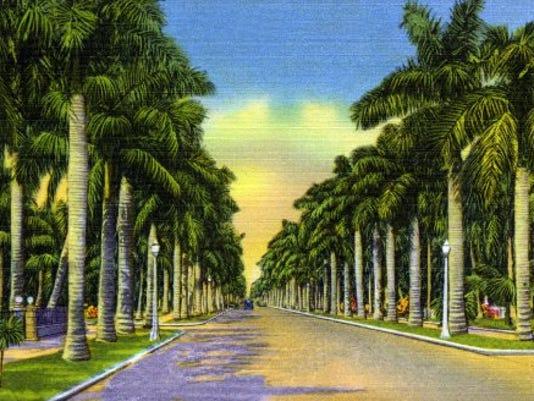 McGregor Blvd. vintage postcard.jpg