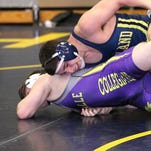 Hartland's Sage Castillo earned two victories as the Eagles took a split on Sunday, beating Davison and losing to Detroit Catholic Central.