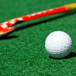 YAIAA field hockey tourney bracket announced