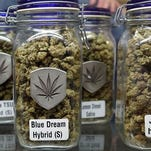 Trump's anti-pot AG choice rattles legal marijuana movement