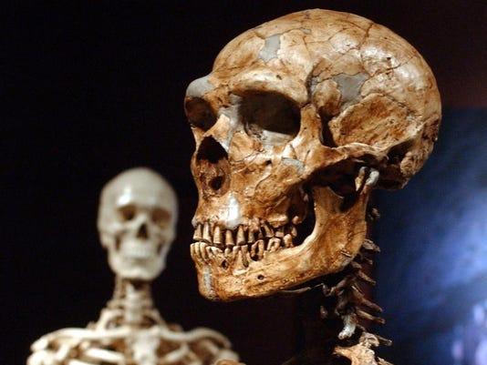 Germany Europe Neanderthals
