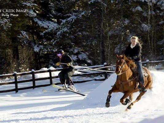 Skijoring cover