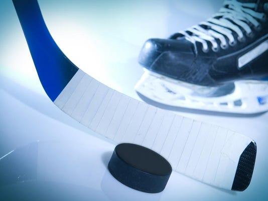 ice hockey stick, puck, skate