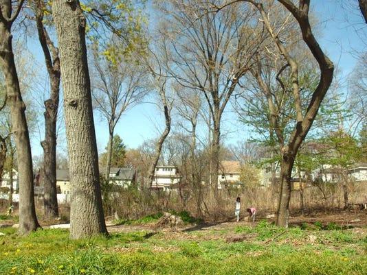 042116-sb-lincolnwoods1001.jpg