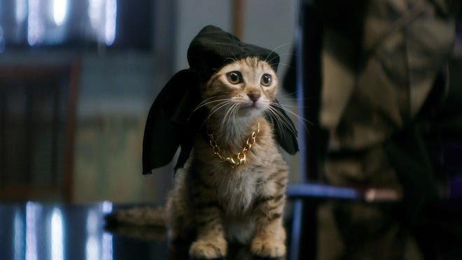 """""""Keanu"""" is based on a cat named Keanu, who, in one dream sequence, is voiced by Keanu Reeves."""