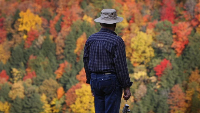 A visitor to Letchworth State Park takes in the fall foliage on Monday, October 13th, 2008.  Area foliage is expected to reach peak colors this weekend. FOR Metro  (Democrat and Chronicle, Photo by Annette Lein, 101308)