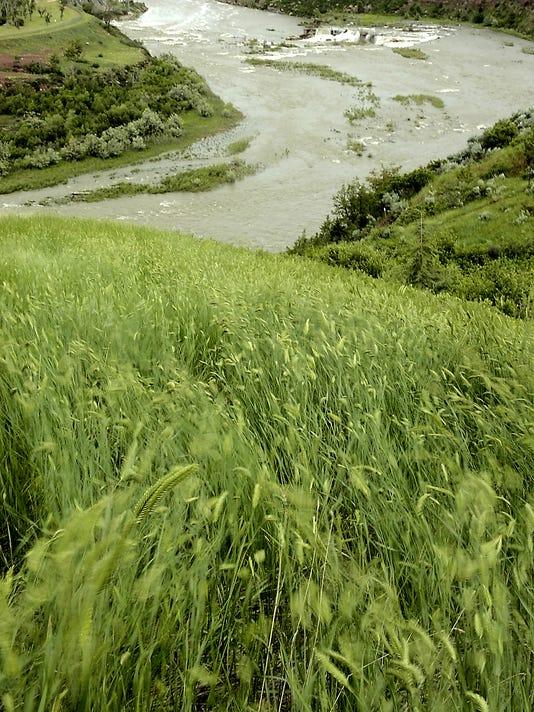 -MISSOURI_RIVER_SCENIC_MTGRE101.jpg_20060615.jpg