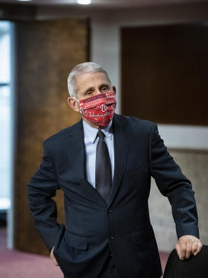 Director of the National Institute of Allergy and Infectious Diseases  Anthony Fauci, M.D., wears a Washington Nationals face covering as he arrives for a Senate Health, Education, Labor and Pensions Committee hearing on Capitol Hill in Washington on June 30.