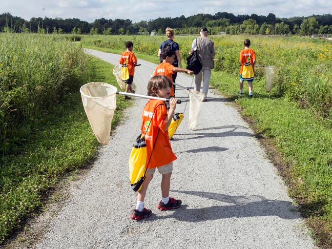 Bug camper Parker Konigsburg keeps an eye out for insects