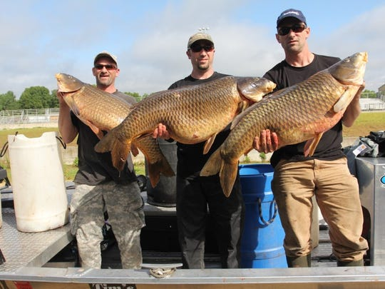 AMS Bowfishing event will take place in Marshfield