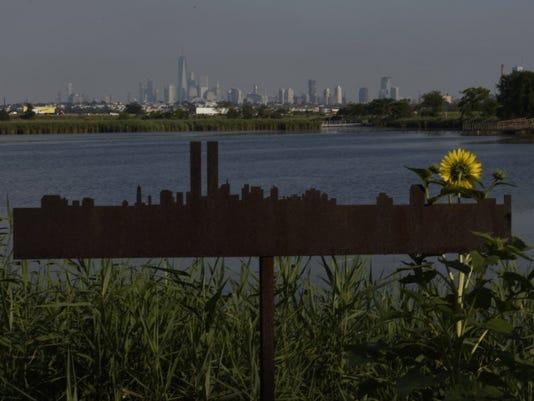 Meadowlands.jpg