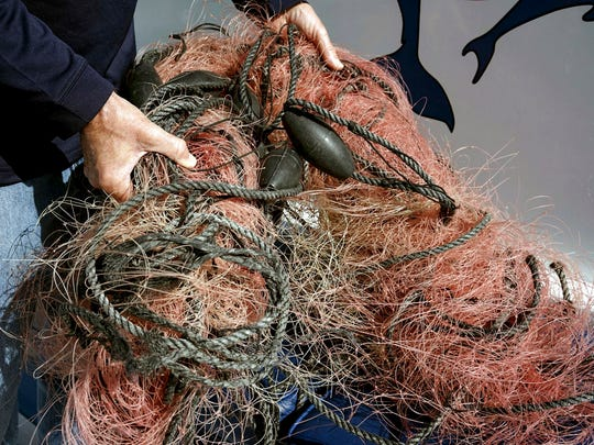 FILE - In this Nov. 30, 2015, file photo, Capt. David Anderson of Captain Dave's Dolphin and Whale Watching Safari in Dana Point, Calif., shows a net that a whale was found entangled in.