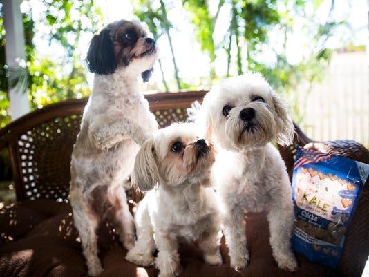 NDN 0310 GRAND DOGS
