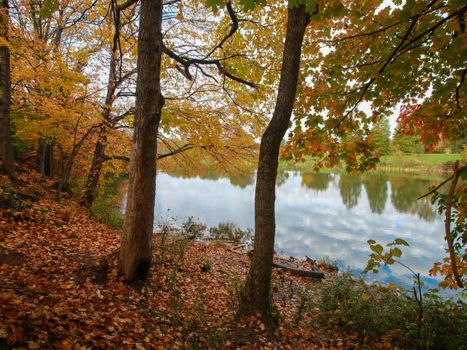 Fall colors around Cherokee Park Lake on Tuesday morning.