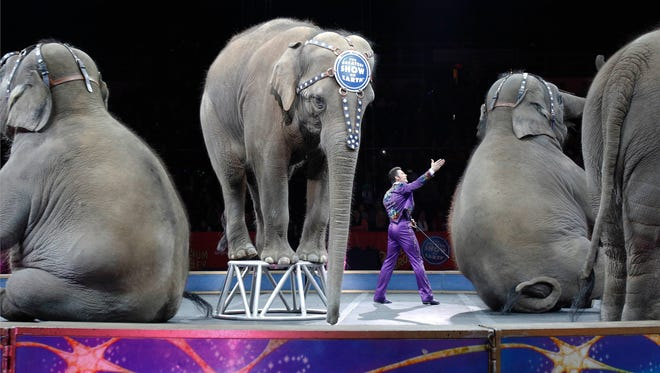 """In this May 1, 2016 file photo, Asian elephants perform for the final time in the Ringling Bros. and Barnum & Bailey Circus in Providence, R.I. The Ringling Bros. and Barnum & Bailey Circus will end """"The Greatest Show on Earth"""" in May 2017, following a 146-year run. Declining attendance combined with high operating costs, along with changing public tastes and prolonged battles with animal rights groups all contributed to its demise."""