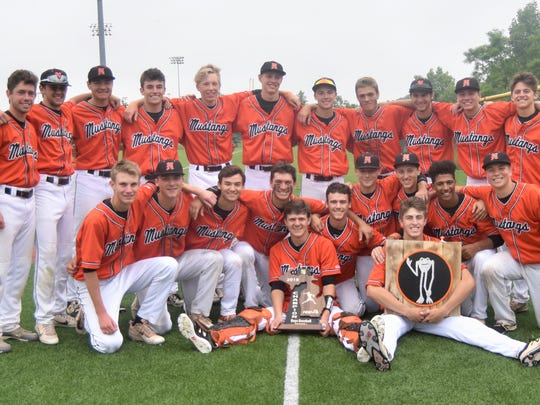 Northville earned its second straight Division 1 regional baseball title with a 1-0 win over Lakeland.