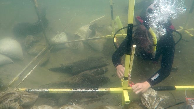University of West Florida graduate student Michael Dillon Roy excavates a newly discovered Emanuel Point shipwreck in Escambia Bay. The wreck is the third found from Tristan de Luna's 1559 fleet lost in Escambia Bay.