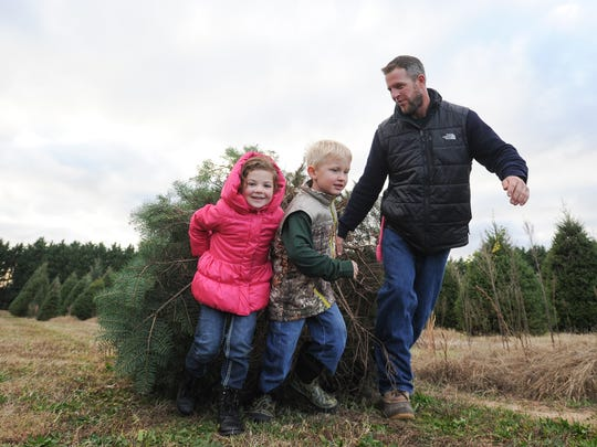 Ella Baffone, 5, of Newark, Christopher Moody, 4, of Odessa and Ben Baffone, of Newark, pull a Christmas tree that was cut at Coleman Christmas Tree Farm in Odessa.