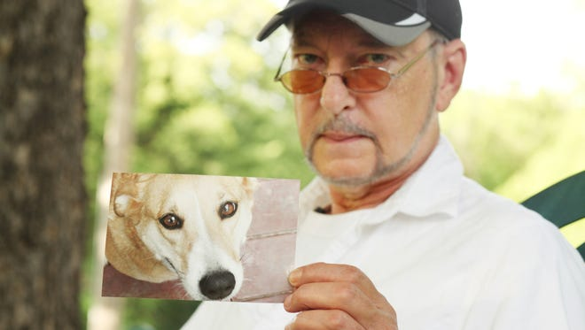 Lou Gallo, an English professor at Radford University in Radford, Va., holds a photo of his dog Peaches, a Jack Russell mix, that died two years ago in this photo taken on July 2, 2014. Gallo blames the heartworm and flea medication, Trifexis, after which one dose sickened his dog. One month after being given the drug and accumulating $7,000 of medical bills, Peaches had to be euthanized.