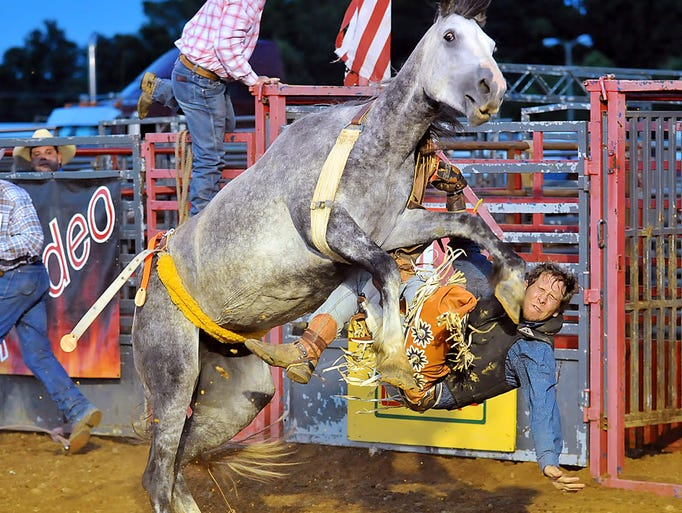 Travis Deal (Dickson, Tenn.). Saddle Bronc Riding. Dickson Stampede Days Rodeo - June 20-21. <strong>See Wednesday's </strong>Dickson Herald<strong> for more Photos.</strong>